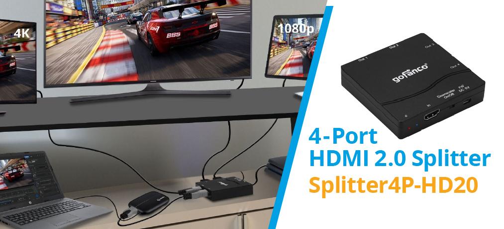Splitter4P-HD20.jpg